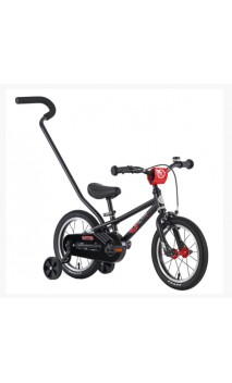 BYK E-250 Boys Mountain bike